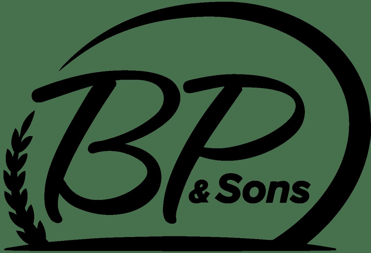BP Motors